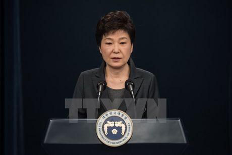 Cac dang Han Quoc len tieng ve phat bieu cua Tong thong Park Geun-hye - Anh 1