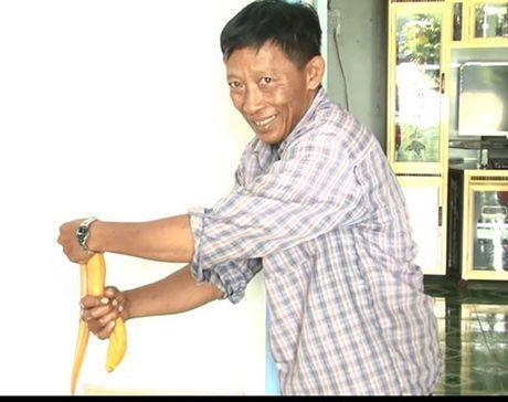 Nong dan mien Tay bat duoc luon vang, 50 trieu chua ban - Anh 2