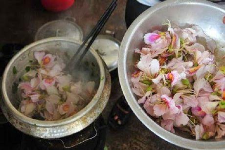 Thuong thuc nhung mon an tu hoa doc dao o Viet Nam - Anh 1