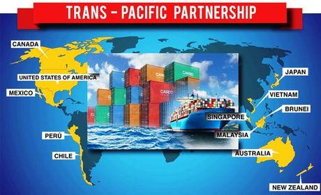 Uy ban dac biet Ha vien Nhat Ban thong qua TPP - Anh 1