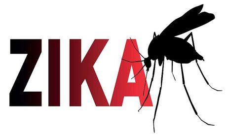 Viet Nam co ten trong 'ban do Zika' the gioi - Anh 1
