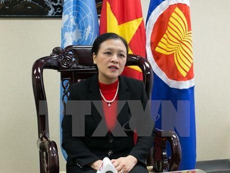 Viet Nam trung cu thanh vien Uy ban Luat phap quoc te cua Lien hop quoc (ILC) - Anh 2