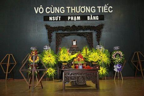 Nghe si Viet nghen ngao tien biet NSUT Pham Bang - Anh 1