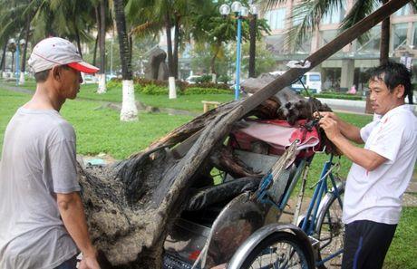 Bai bien Nha Trang tran ngap rac lu - Anh 9