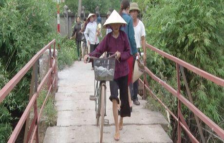 Hang tram ho dan bat an vi cay cau xuong cap tai xa Tien Phong, huyen Ba Vi - Anh 1
