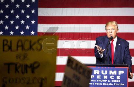 Bau cu My 2016: Toa an My bac de nghi cua ong D.Trump ve giam sat bau cu - Anh 1