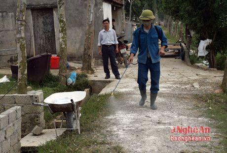 Yen Thanh can 20 nghin lieu vac xin chong dich tai xanh - Anh 1