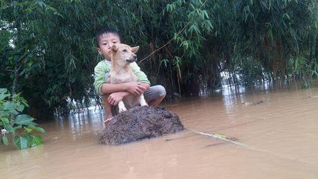 Cau be 6 tuoi che cho ban cho giua lu du mien Trung day cam phuc - Anh 1