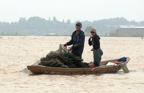 Nguoi dan lan ngup trong bien nuoc o tam lu Quang Binh - Anh 12