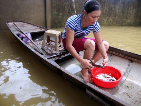 Nguoi dan lan ngup trong bien nuoc o tam lu Quang Binh - Anh 4