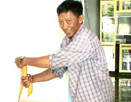 Vinh Long: Lao nong bat duoc luon vang nang gan 1kg - Anh 2
