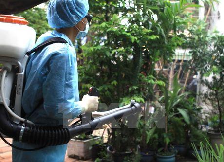 Viet Nam da ghi nhan duoc 36 truong hop mac virus Zika - Anh 2