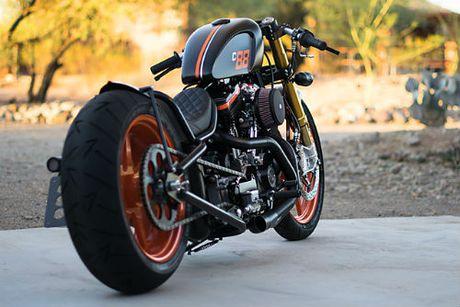 Me man xe do 2001 Harley Davidson Sportster-DP Customs - Anh 5