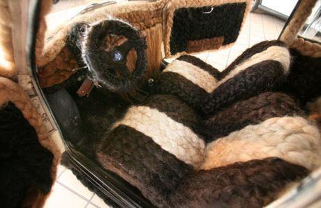 Dung 100kg toc de trang diem cho o to Fiat 500 co - Anh 6