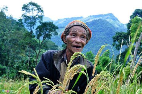 Cuoc song ly ky cua nhung 'nguoi rung' Viet Nam - Anh 1