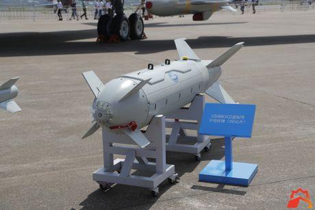 Giat minh kho vu khi may bay nem bom H-6K Trung Quoc - Anh 3
