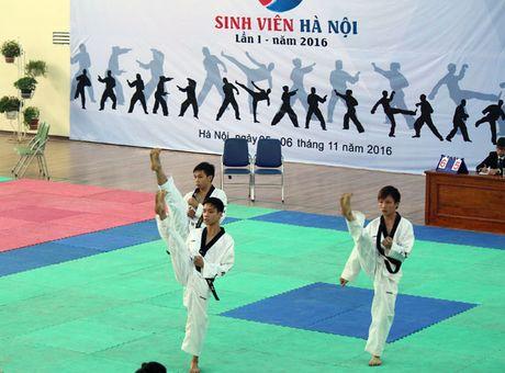 Taekwondo Ha Noi co them san choi cho sinh vien - Anh 1