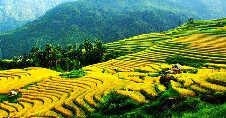 Ruong bac thang - Diem den hap dan o Ha Giang - Anh 3