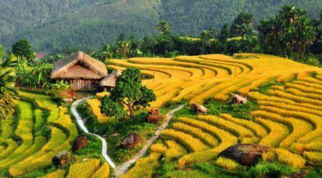 Ruong bac thang - Diem den hap dan o Ha Giang - Anh 6