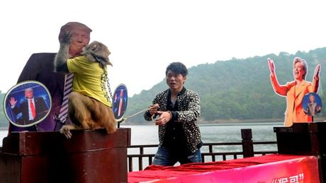 Chu khi 'tien tri' Trung Quoc du doan ong Trump dac cu Tong thong My - Anh 1