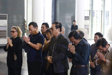 Cac NS Xuan Bac, Quoc Khanh, Huong Tuoi, Van Dung... den tien dua NSUT Pham Bang - Anh 1