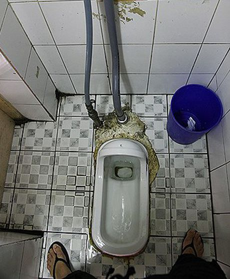 Cau tom mien Tay te nhat hanh tinh trong mat khach nuoc ngoai - Anh 6