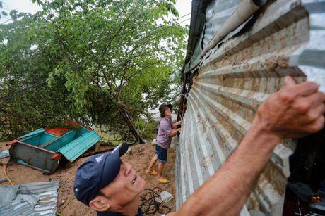 Tan hoang vung ron lu Phu Yen - Anh 1