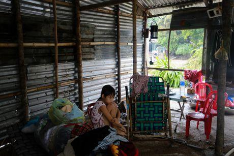 Tan hoang vung ron lu Phu Yen - Anh 5