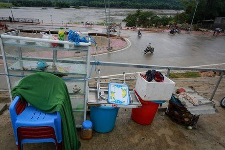 Tan hoang vung ron lu Phu Yen - Anh 6