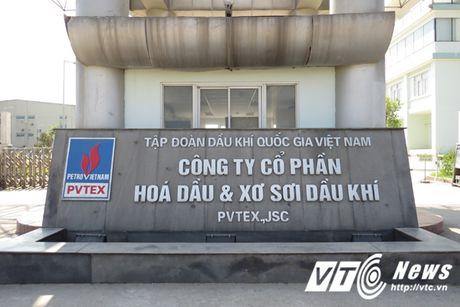 Nha may thua lo nghin ty PVTex qua loi ke cong nhan - Anh 1