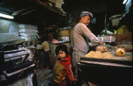Loat anh hiem ve khu o chuot o Hong Kong giai doan 1980 - Anh 11