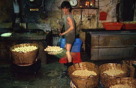 Loat anh hiem ve khu o chuot o Hong Kong giai doan 1980 - Anh 12