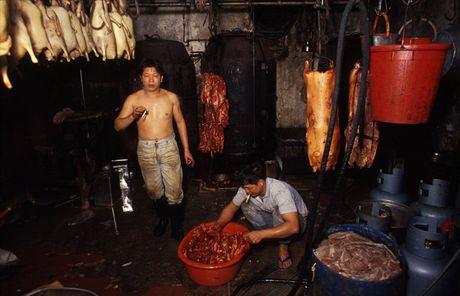 Loat anh hiem ve khu o chuot o Hong Kong giai doan 1980 - Anh 13