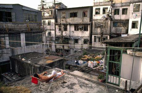 Loat anh hiem ve khu o chuot o Hong Kong giai doan 1980 - Anh 3