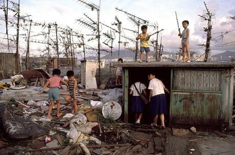 Loat anh hiem ve khu o chuot o Hong Kong giai doan 1980 - Anh 9