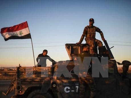 Kich chien ben bo song Tikrit, quan Iraq tai chiem thi tran Hammam - Anh 1