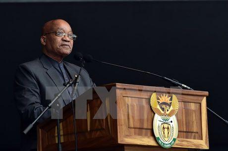 Nam Phi: Lanh dao dang ANC keu goi Tong thong Zuma tu chuc - Anh 1