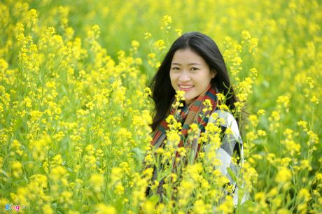 Nhung canh dong hoa cai dep ngan ngo tu Bac vao Nam - Anh 6