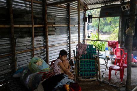 Canh tan hoang vung ron lu Phu Yen - Anh 6