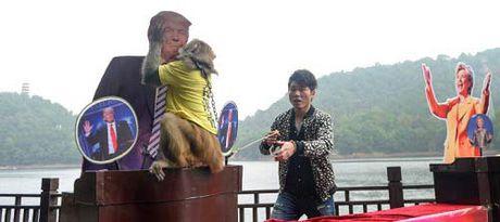 Chu khi 'tien tri' du doan Donald Trump dac cu Tong thong My - Anh 1