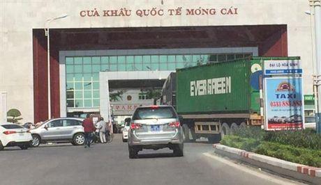 Som trien khai co quan kiem dinh tai Mong Cai - Anh 1