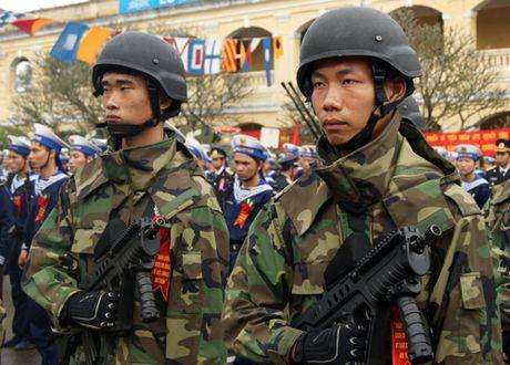 Bao Nhat: Viet Nam hien dai hoa quan doi, ngay cang tu tin - Anh 4