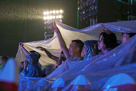 Hon 15.000 khan gia doi mua xem liveshow cua Viet Huong - Anh 2