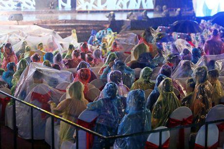 Hon 15.000 khan gia doi mua xem liveshow cua Viet Huong - Anh 3
