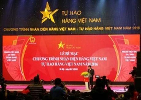 Be mac chuong trinh Tu hao hang Viet Nam 2016 - Anh 1