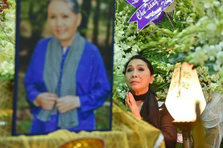 Phi Nhung, Phuong Thanh vieng sau nu Ut Bach Lan luc nua dem - Anh 5