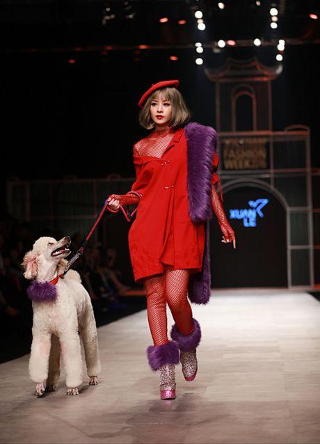 Chi Pu ke chuyen catwalk cung cun cung poodle - Anh 1