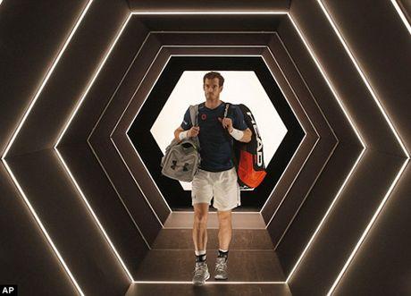 Andy Murray: 'La so mot the gioi that tuyet voi, nhung lam bo con tuyet voi hon' - Anh 1