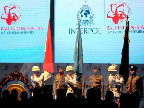 Khai mac Ky hop Dai hoi dong Interpol lan thu 85 tai Indonesia - Anh 1