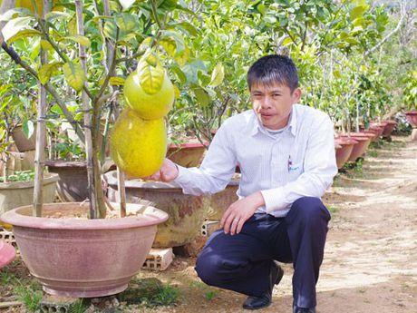 Luu Ai Cap, ot sung bo, ca chua Beef khong lo hut khach - Anh 14